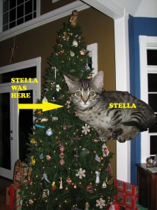 Stella and the Christmas Tree